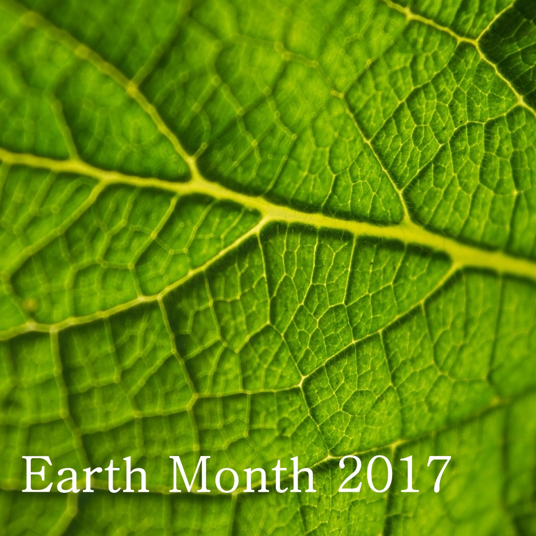 Our Earth Month Picks
