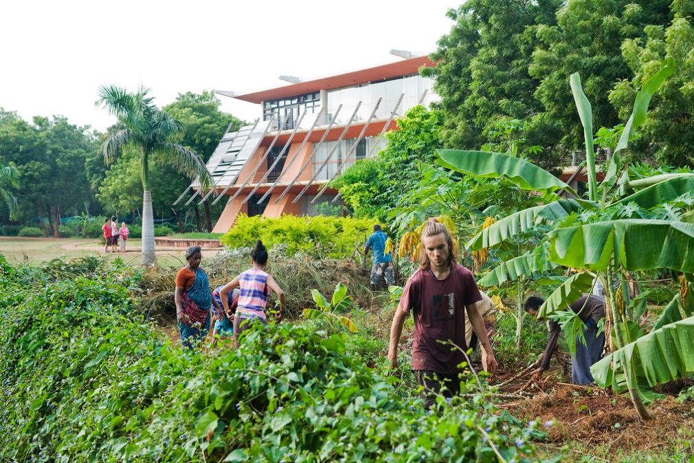 Volunteering in Auroville