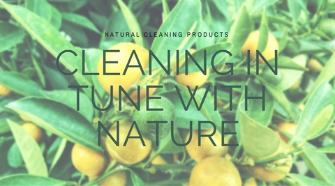 Cleaning in tune with nature