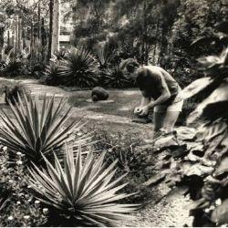 Stories of Auroville - Tim