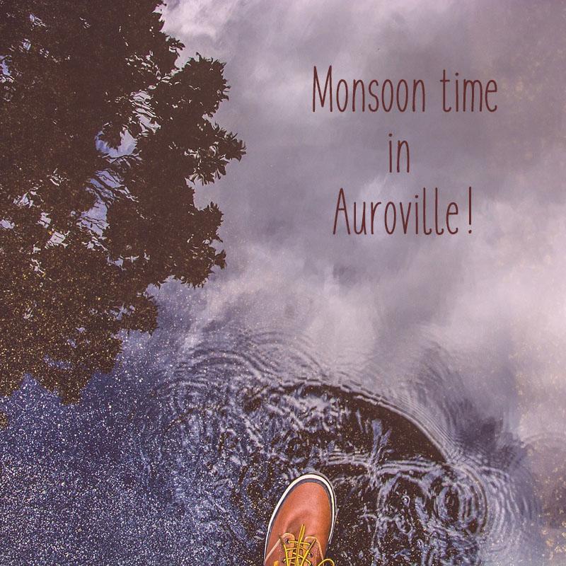 Monsoon in Auroville
