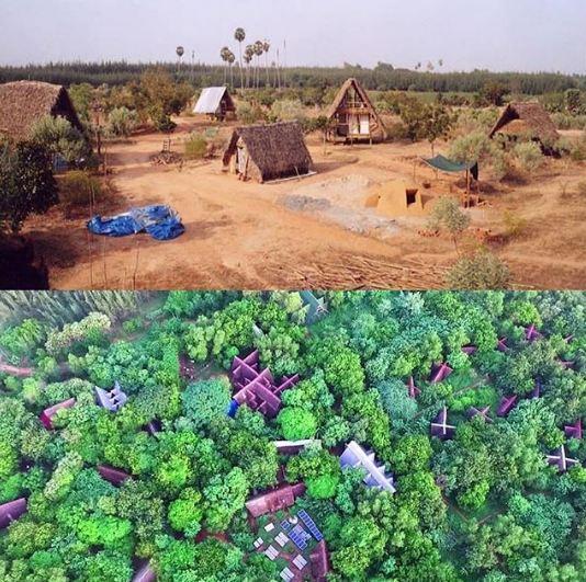 Planting in the desert - Sadhana Forest