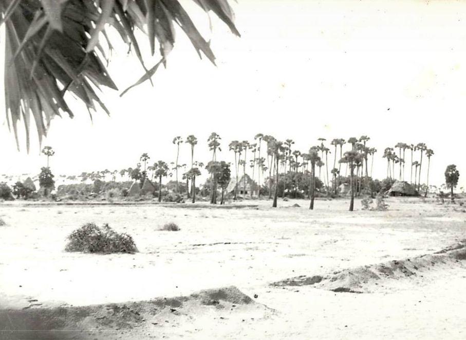Aurodam in 1977