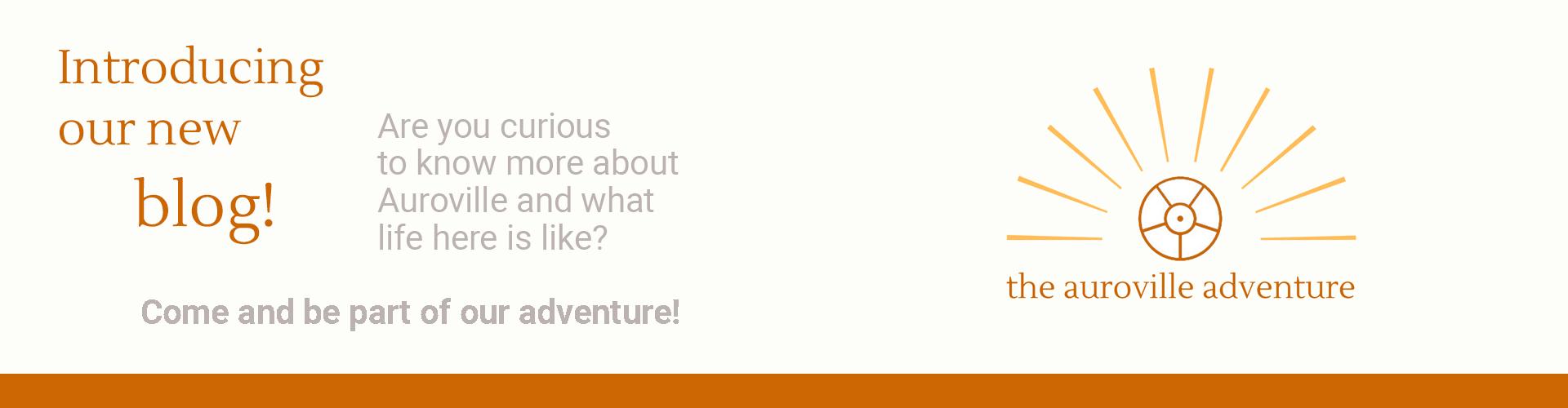 the blog adventure